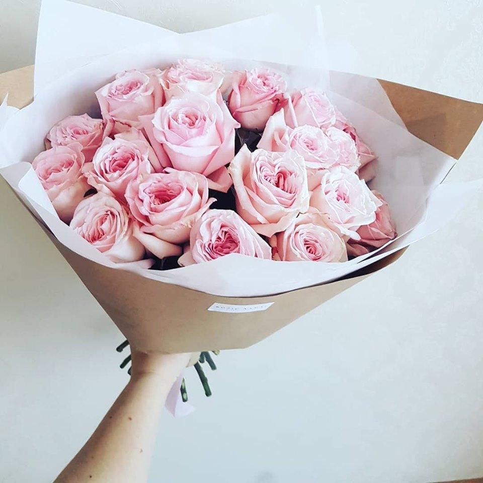 Bijūninės rožės / 25vnt/ pink O'Hara