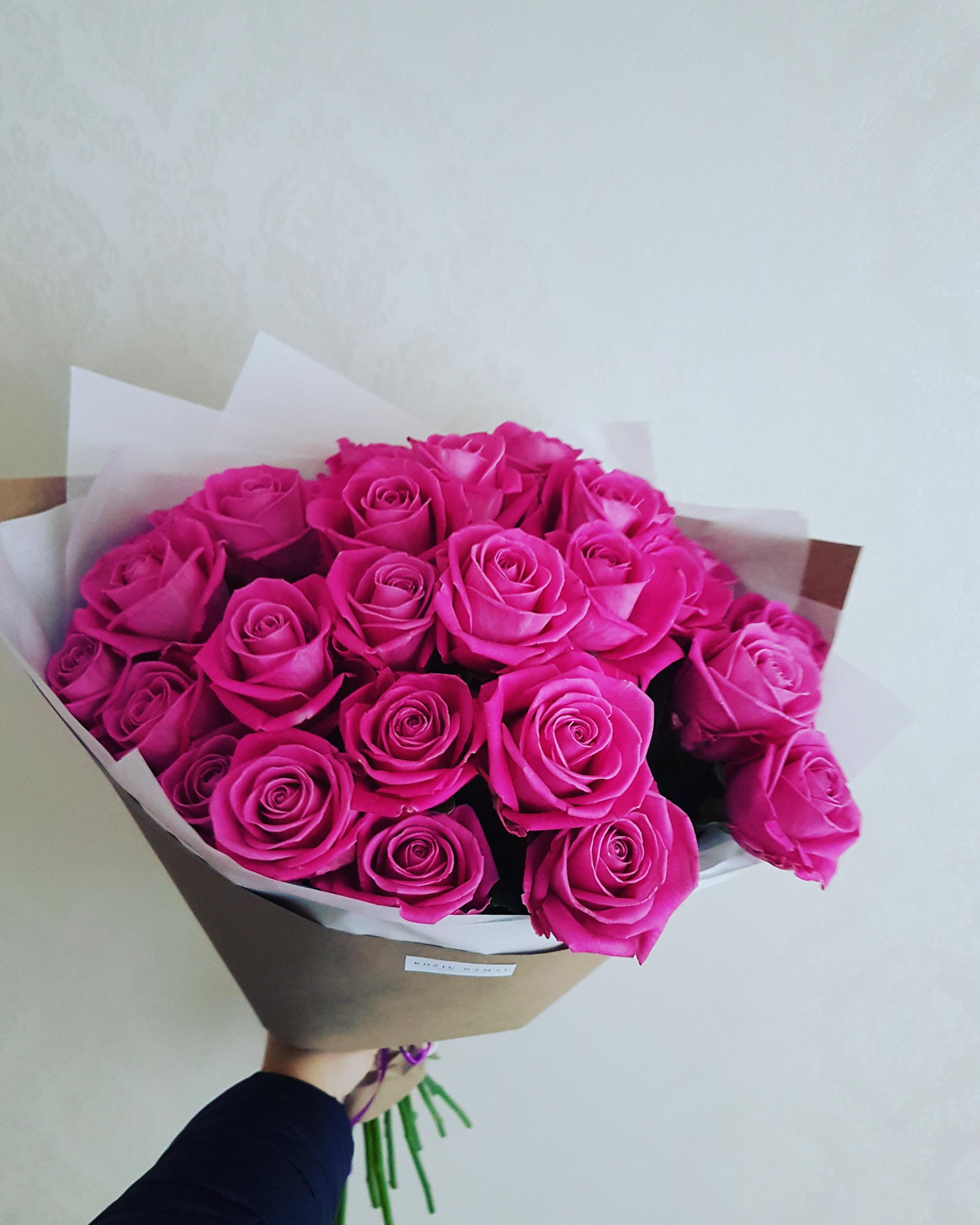 Rožinės rožės / 30 vnt.