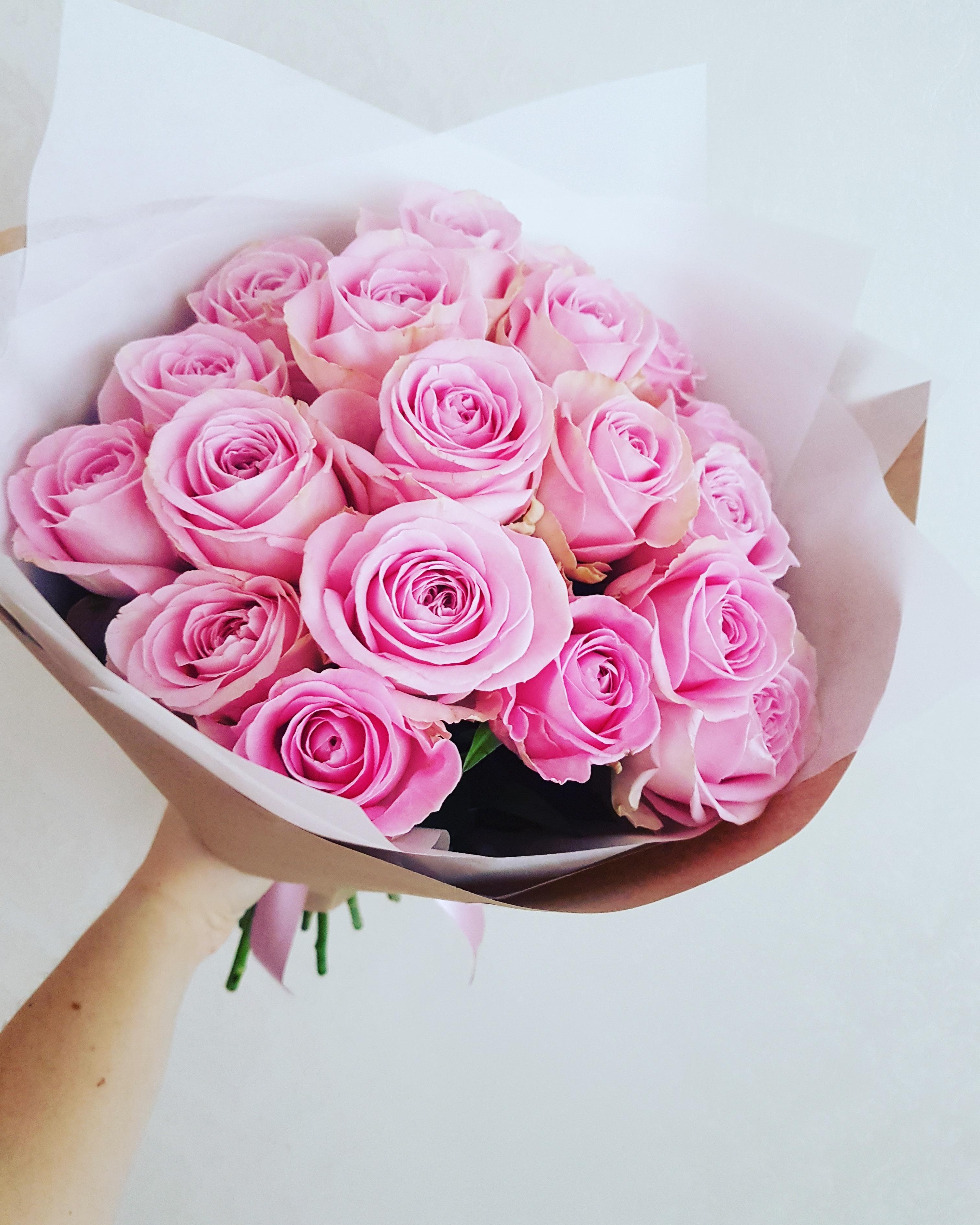 Rožinės rožės / 19 vnt / Heidi
