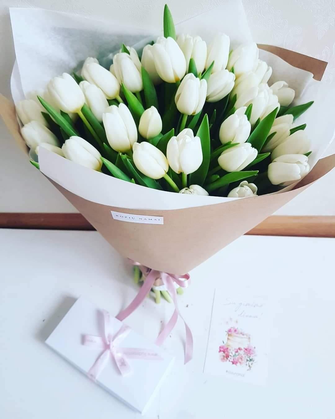 Baltos tulpės / 35 vnt.