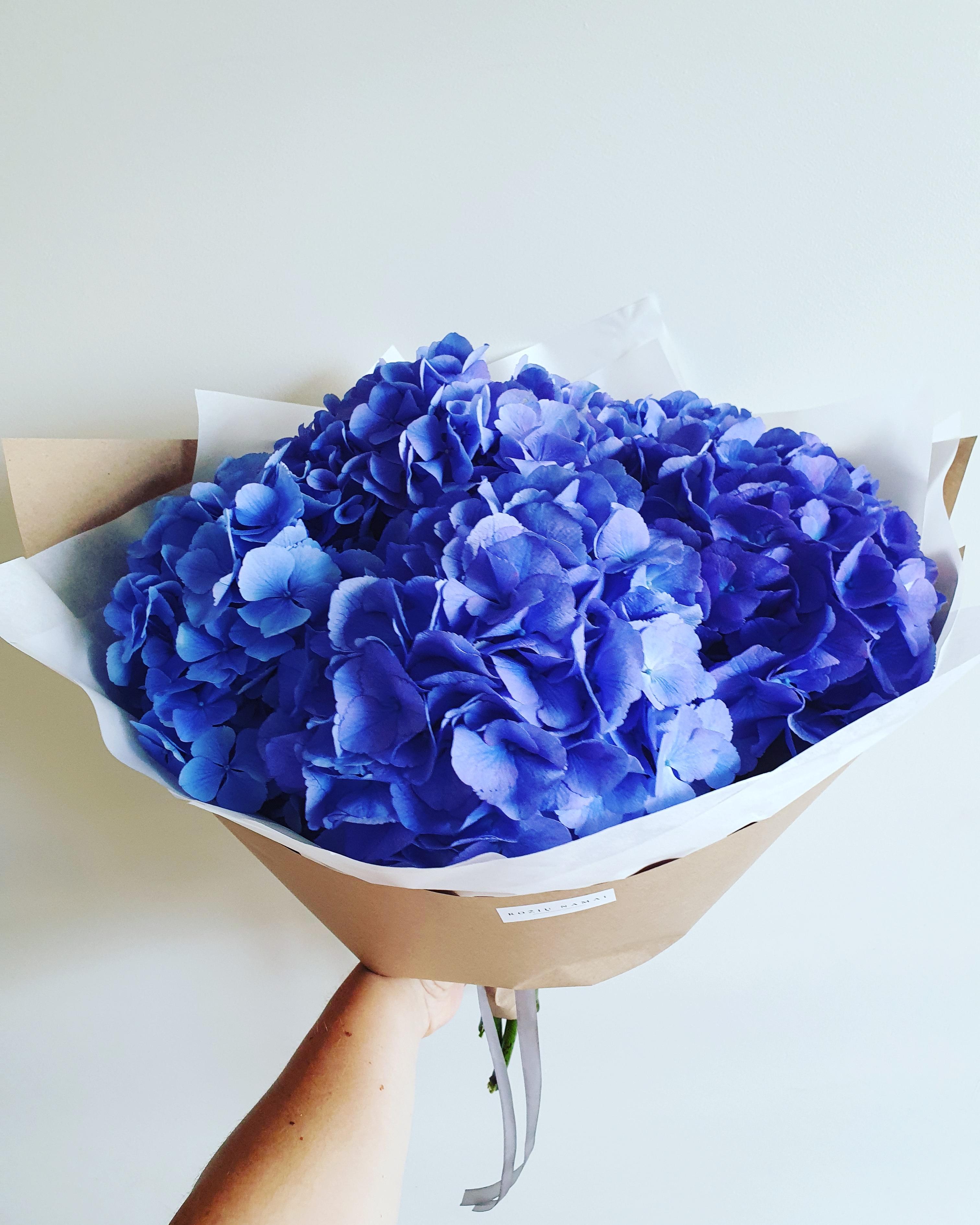 Mėlynos hortenzijos
