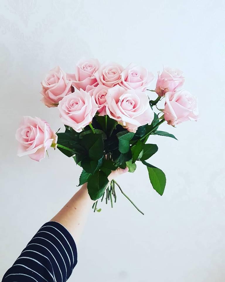 Private: Šviesiai rožinės rožės