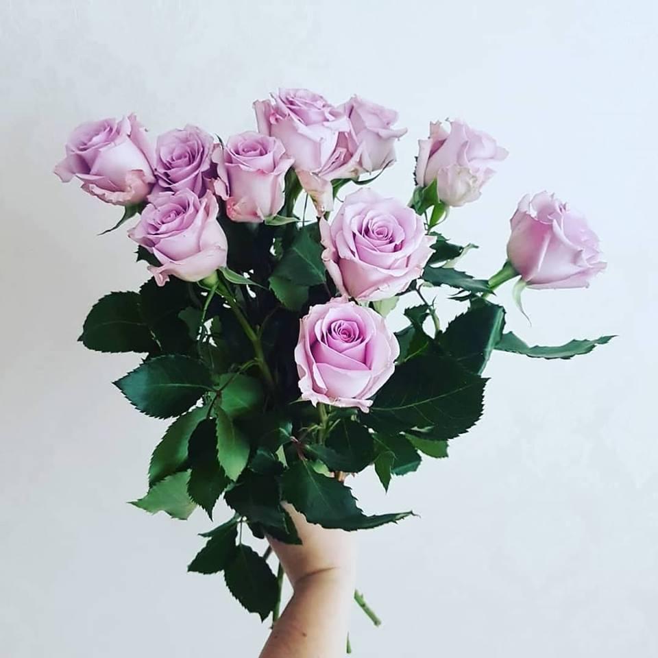 Private: Violetines rožės