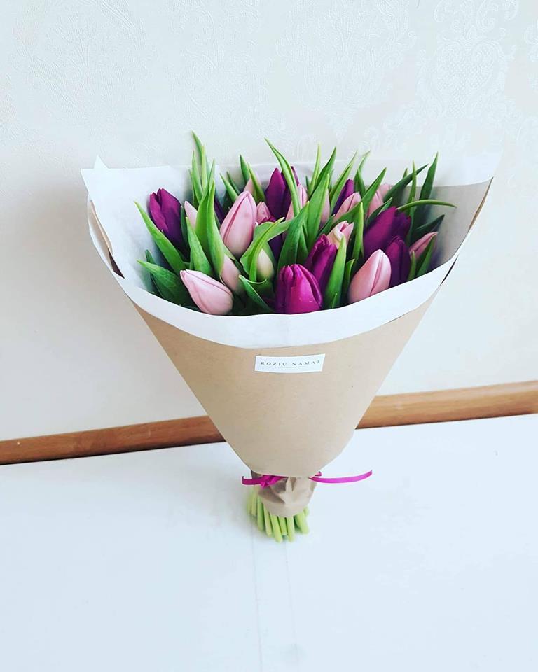 Violetinės ir rožinės tulpės