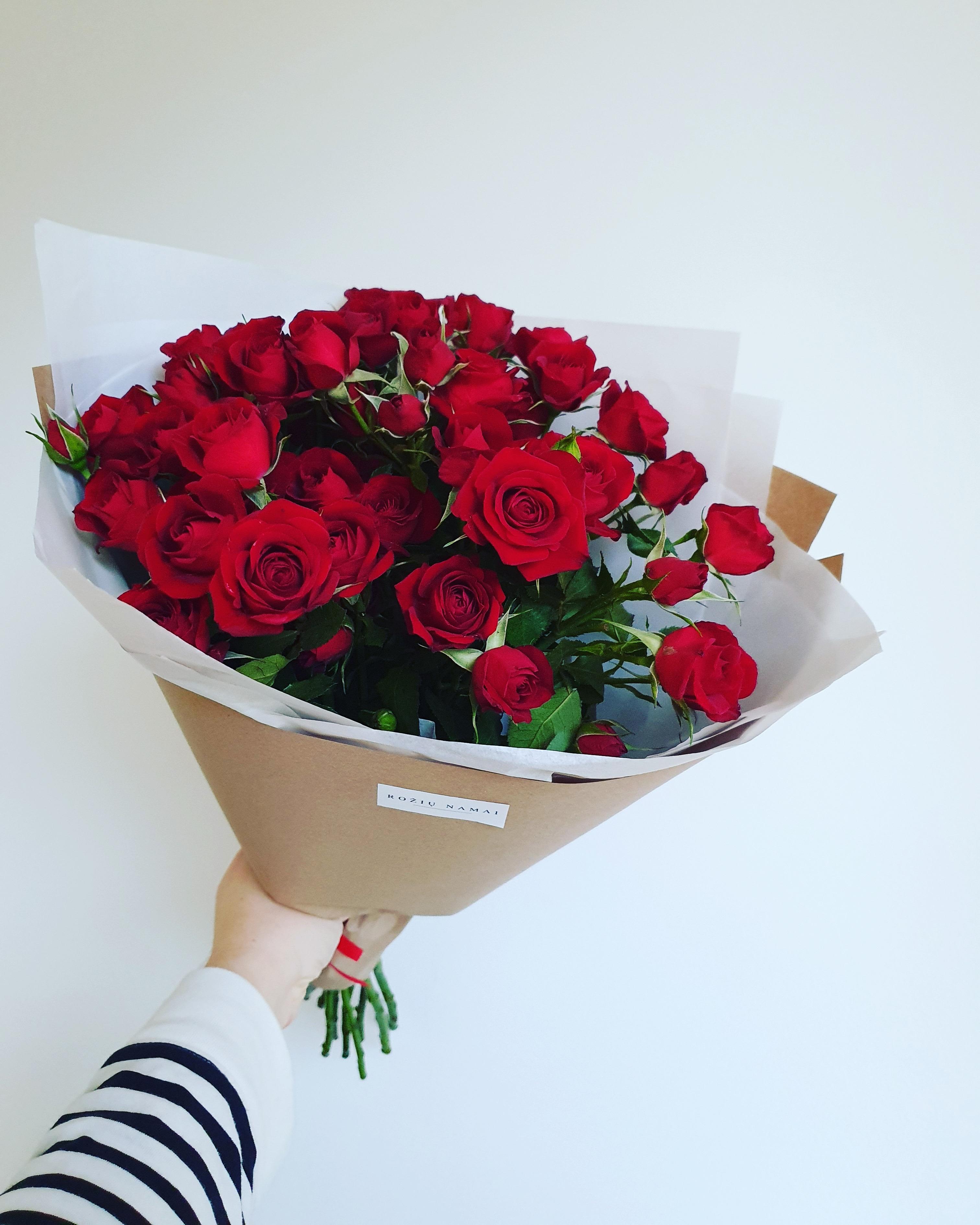 Rubicon daugiažiedės rožės paveikslelis