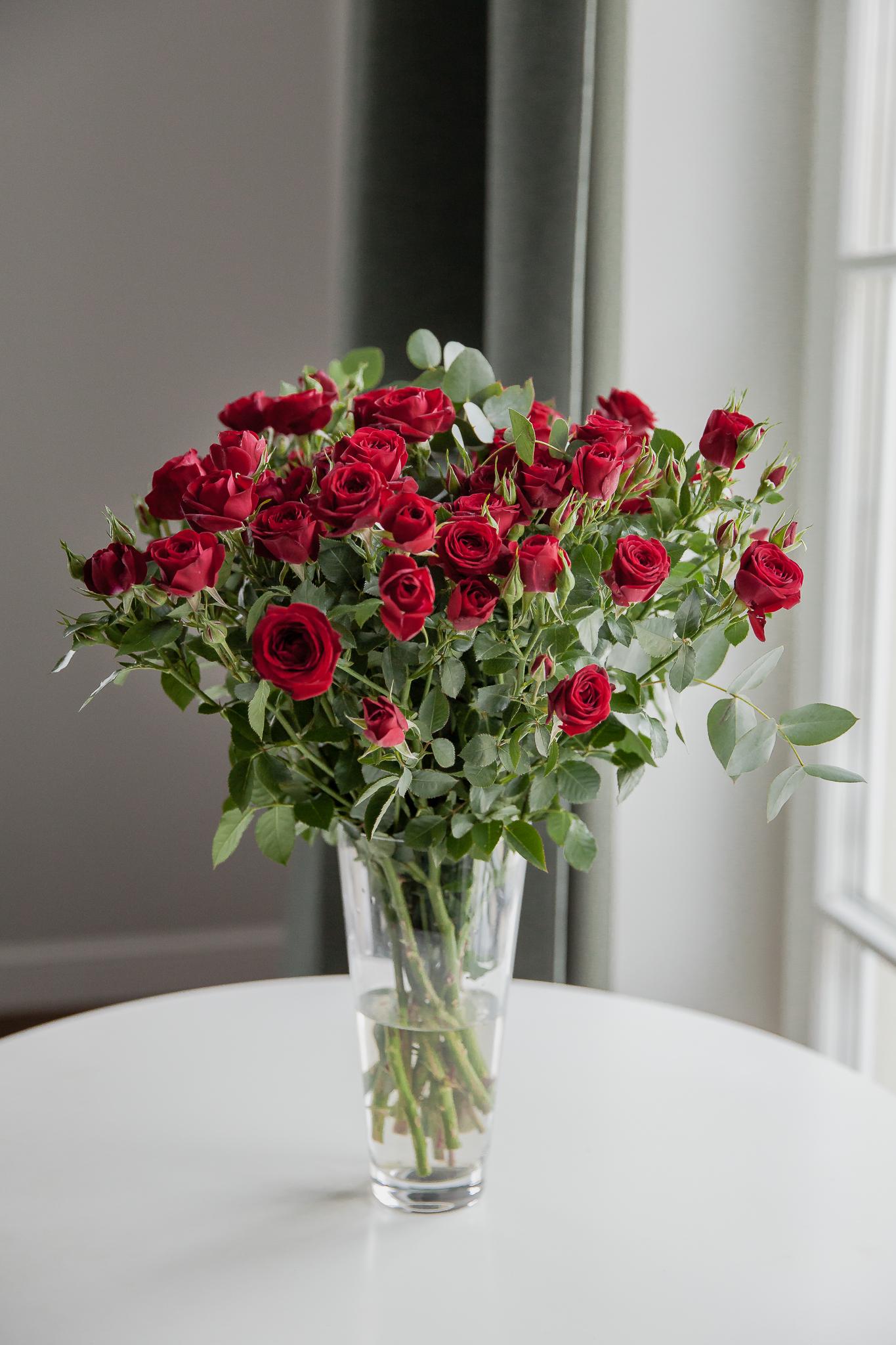 Rubicon daugiažiedės rožės