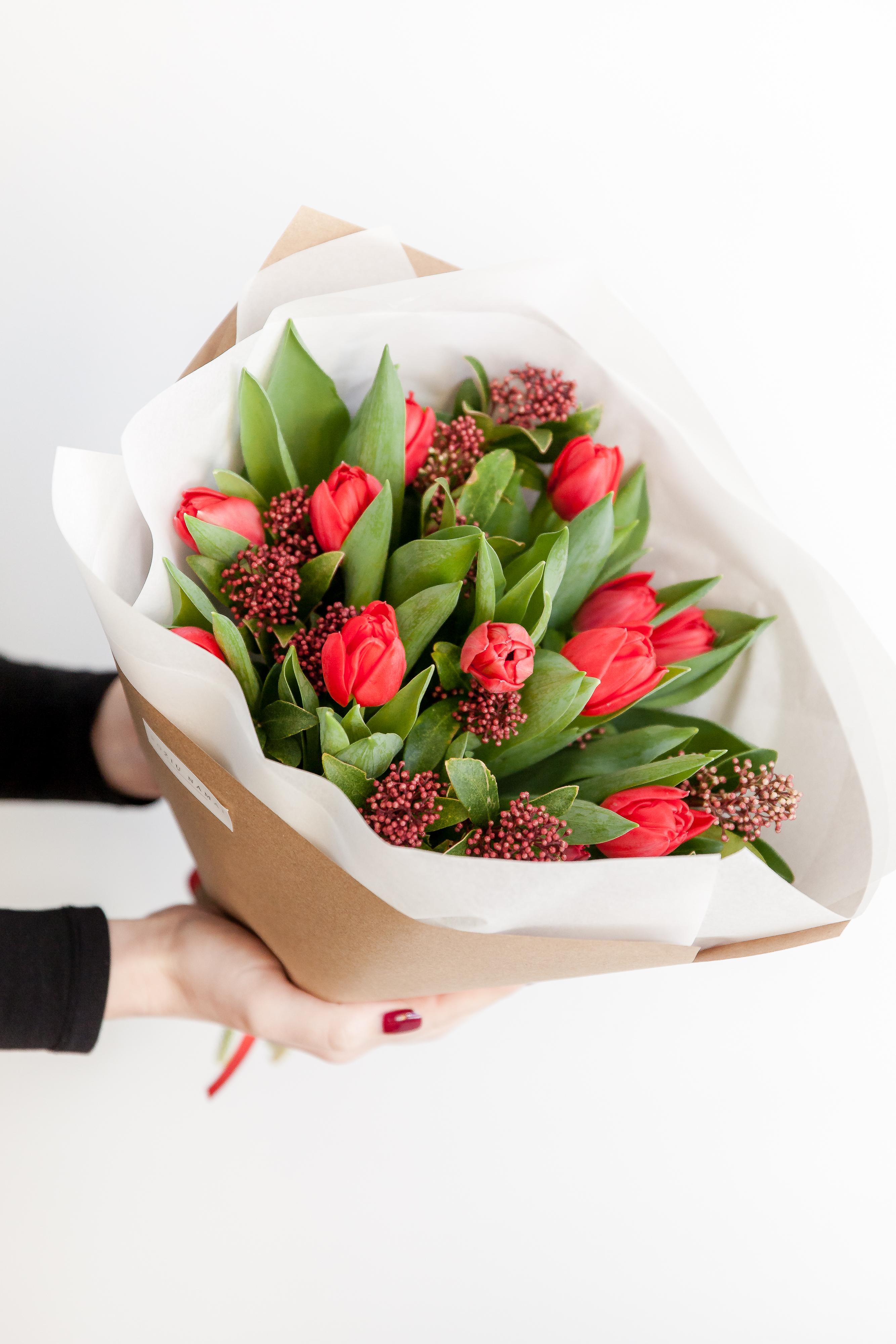Tulpės+skimia